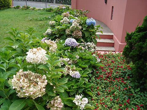 Jardins - Áreas Comuns - Pousada Villa Friuli Residence